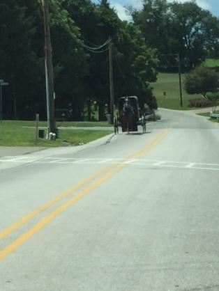 AmishVisitingDay